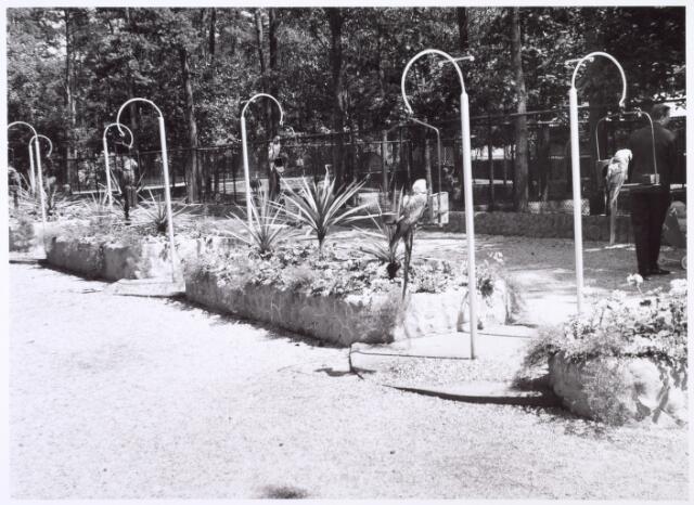 016266 - Dierentuin. Entree van het dierenpark aan de Bredaseweg. Oorspronkelijk heette het Burgers Dierenpark en werd later overgenomen door de firma Van Dijk. In augustus 1973 werden de poorten gesloten