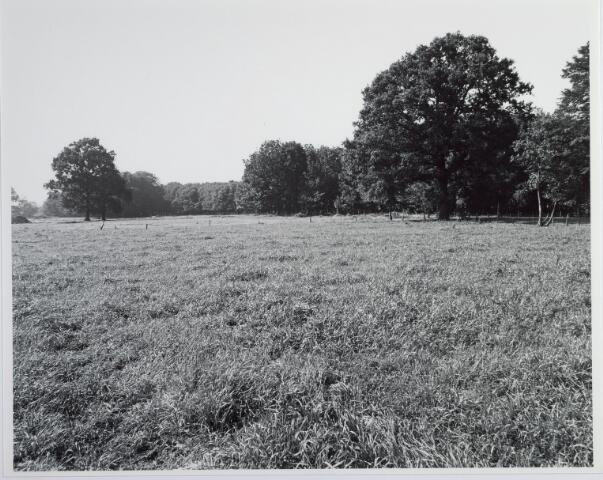 015410 - Landschap. Omgeving van heerboerderij De Blaak