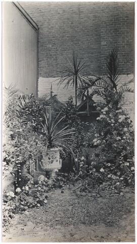 006710 - Tuin van de Familie Brouwers-van Waesberghe. Begin 20ste eeuw