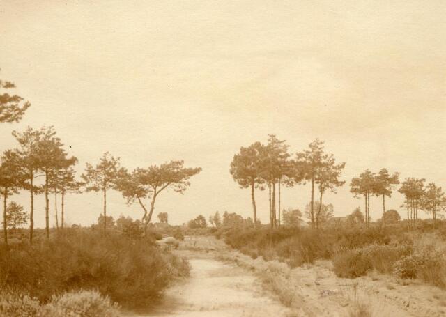 600792 - Landschap in de omgeving van Loon op Zand. Duinen en bossen.Kasteel Loon op Zand. Families Verheyen, Kolfschoten en Van Stratum