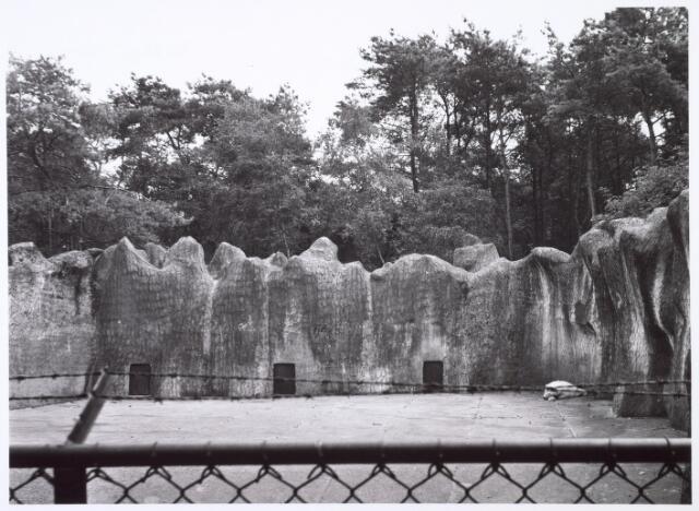 016276 - Dierentuin. IJsbeer in het dierenpark aan de Bredaseweg. Oorspronkelijk heette het Burgers Dierenpark en werd later overgenomen door de firma Van Dijk. In augustus 1973 werden de poorten gesloten