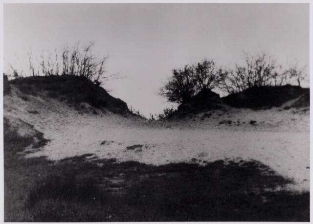 084443 - Zandverstuiving in de Beekse Bergen.
