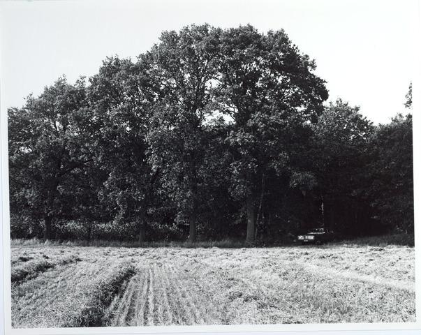 015443 - Landschap. Fase I de Blaak