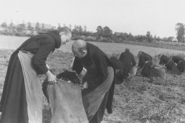 105286 - Monnikenleven Werkzaamheden op het land. Aardappels rooien door de monniken. Sint Paulusabdij. Kloosters Kloosters P.v.d. Pavoordt en D.G. Smeets