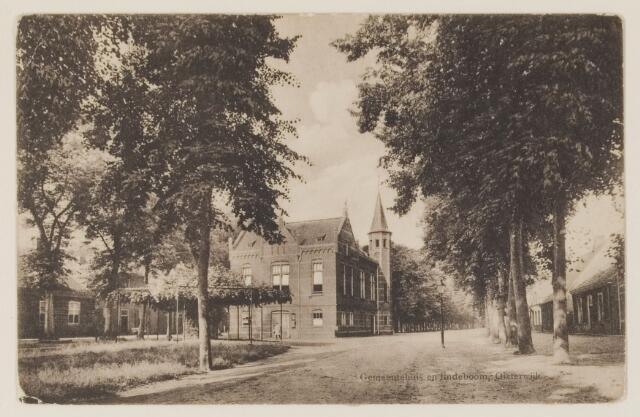 074337 - Het gemeentehuis en de oude linde aan de Lind te Oisterwijk.