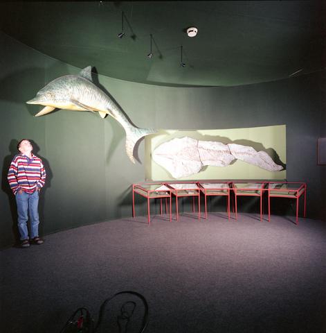 D-000271-2 - Noordbrabants Natuurmuseum, Spoorlaan