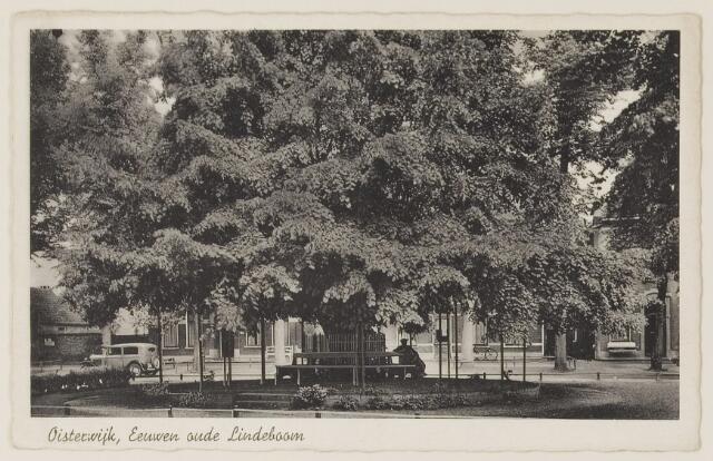 074399 - De oude lindeboom op de Lind te Oisterwijk.