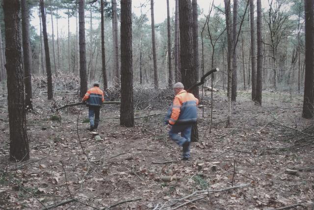 651231 - Mooi zo, Goed zo. Natuurproject van Traverse voor daklozen. Twee boswerkers. Kleding en gereedschap werden gesponsord door verschillende bedrijven in de regio.
