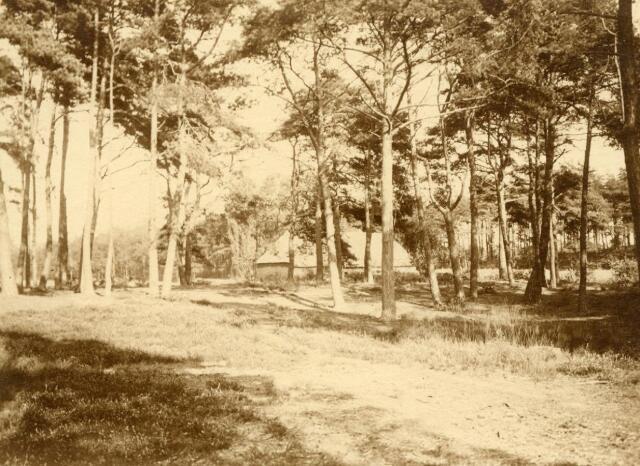 600813 - Kasteel Loon op Zand. Families Verheyen, Kolfschoten en Van Stratum