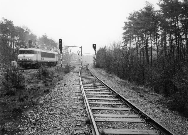 1238_F0396 - Openbaar vervoer. Bels Lijntje bij de Warande. Trein, spoorlijn.
