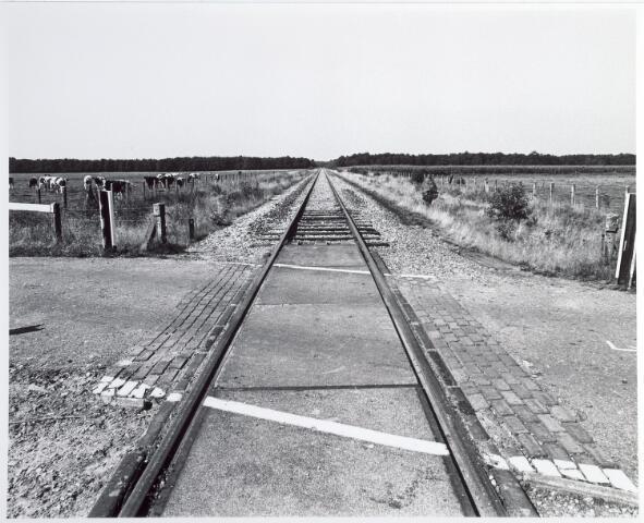 015332 - Landschap. Voormalige spoorlijn Tilburg - Turnhout, in de volksmond ´Bels lijntje´ genoemd. Op Nederlands grondgebied is het thans een fietspad