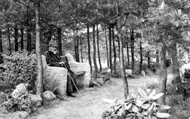 054647 - W.P. Ingenegeren sr., directeur van Levensverzekeringsmaatschappij de Utrecht, nam het initiatief om als solide belegging voor zijn maatschappij landgoed de Utrecht te stichten. Hij kocht daartoe de benodigde woeste grond onder Esbeek, Diessen en Lage Mierde. In 1899 werd begonnen met de aanleg. Op de foto de directeur op een bank in het landgoed.