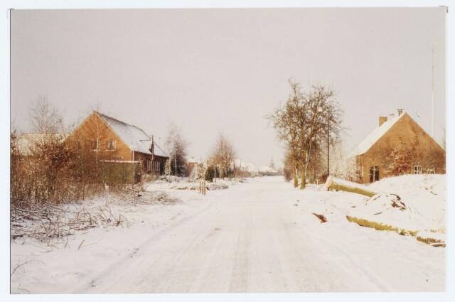 062449 - Landbouw. Boerderijen aan de Berkelseweg, links gelegen boerderij thans clubhuis van voetbalvereniging Jong Brabant