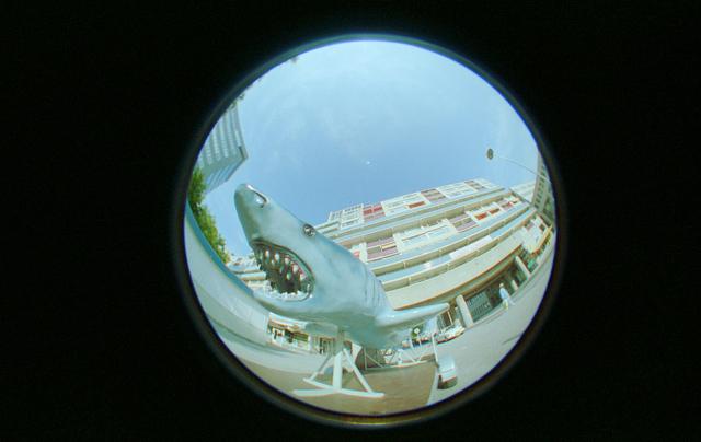 D-00687 - Foto van de flats over de Paleisring gezien vanaf het Stadhuisplein, genomen met een fisheye lens