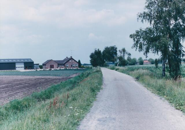 650825 - Gebied waar de latere woonwijk 'De Reeshof' is gebouwd.