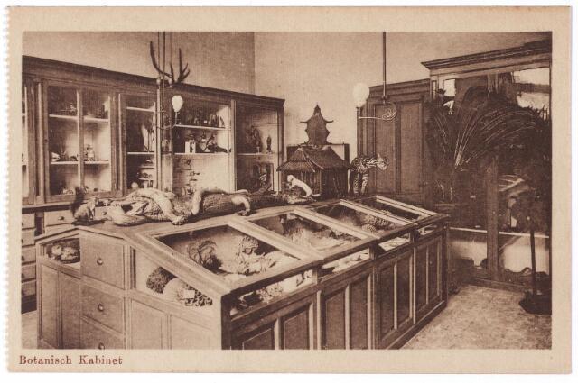 001793 - Onderwijs. Oude Dijk, 'botanisch Kabinet' in de kweekschool van de zusters van liefde.