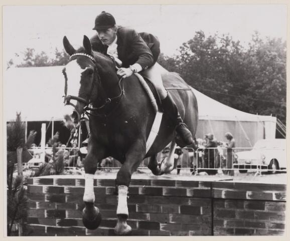 084802 - Paardensport. Vermunt uit Oudenbosch