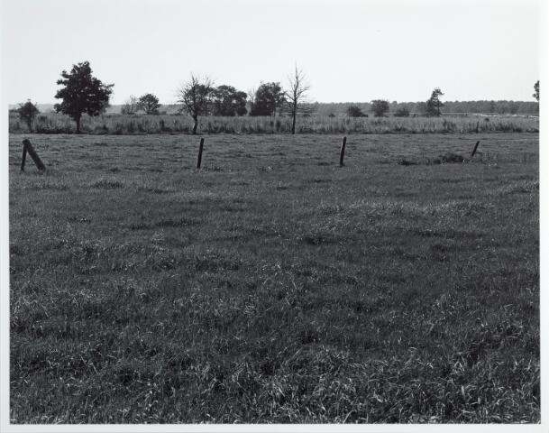 015381 - Landschap. Omgeving van de voormalige spoorlijn Tilburg - Turnhout, in de volksmond ´Bels lijntje´ genoemd