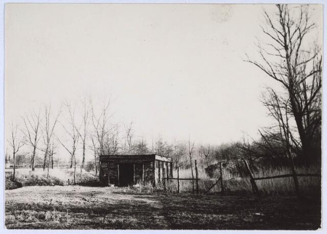 023957 - Ongerepte natuur in de Koningshoeven omstreeks 1975