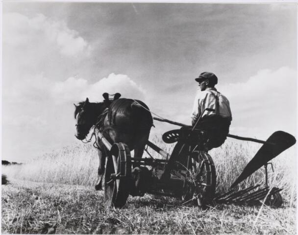 027464 - De maaier op de akker aan de Oisterwijkse Baan
