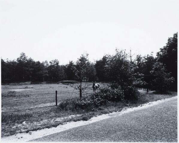 029343 - Reeshofweg