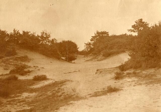 600754 - Landschap in de omgeving van Loon op Zand. Duinen en bossen.Kasteel Loon op Zand. Families Verheyen, Kolfschoten en Van Stratum