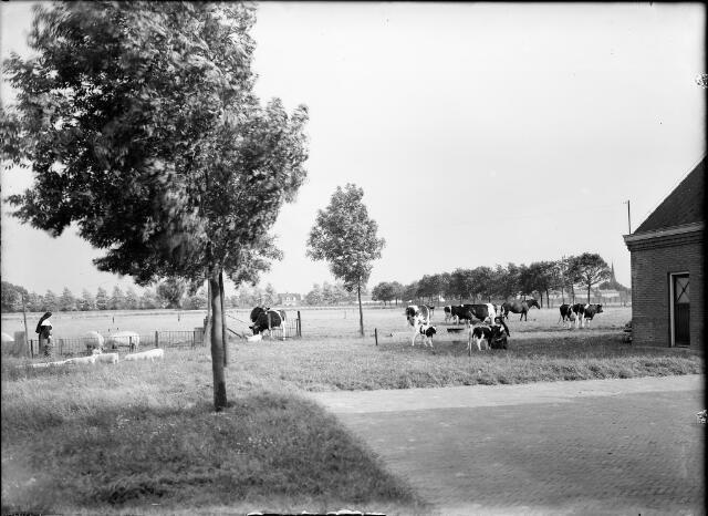 604566 - Trappistinnenabdij O.L.V. van Koningsoord te Berkel-Enschot.