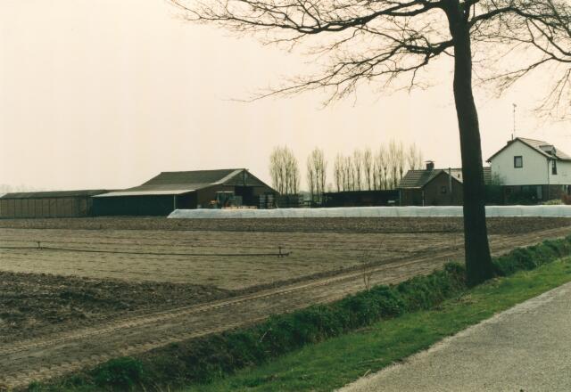 650827 - Gebied waar de latere woonwijk 'De Reeshof' is gebouwd.