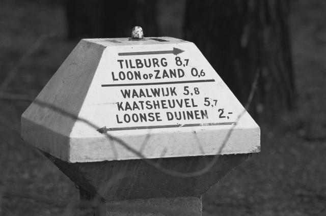 TLB023002600_005 - Een ANWB Paddenstoel, richting Tilburg, Loon op Zand en Waalwijk, Kaatsheuvel, Loonse Duinen