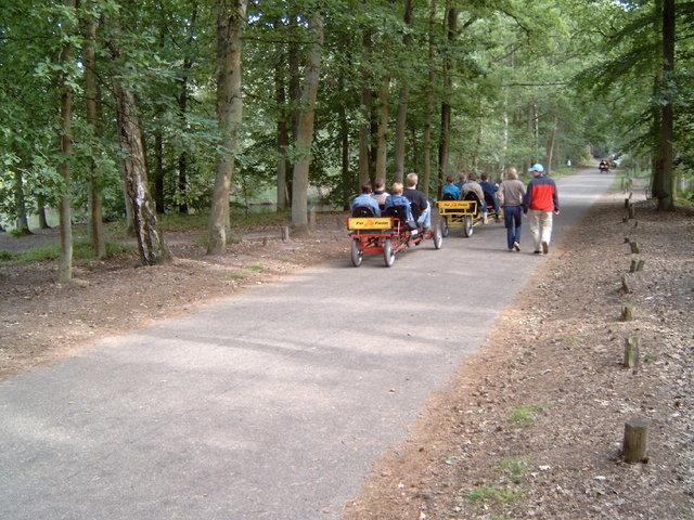 657196 - Natuur. De Oisterwijkse bossen en vennen.