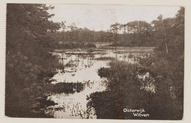 075325 - Serie ansichten over de Oisterwijkse Vennen.  Ven: Witven.