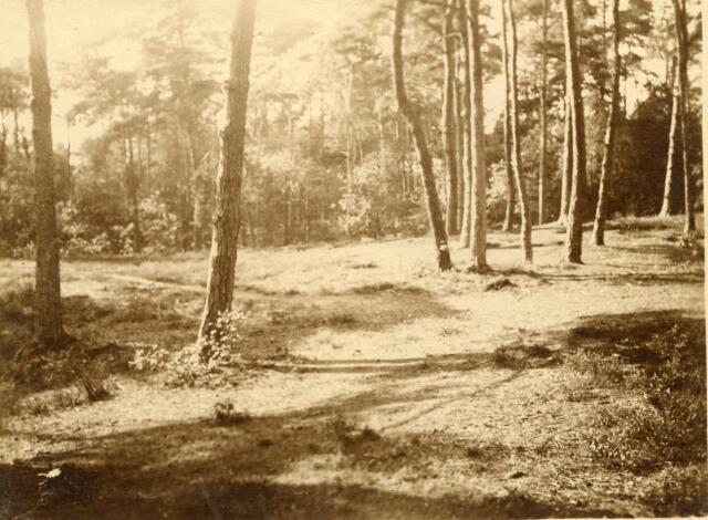 600786 - Landschap in de omgeving van Loon op Zand. Duinen en bossen.Kasteel Loon op Zand. Families Verheyen, Kolfschoten en Van Stratum