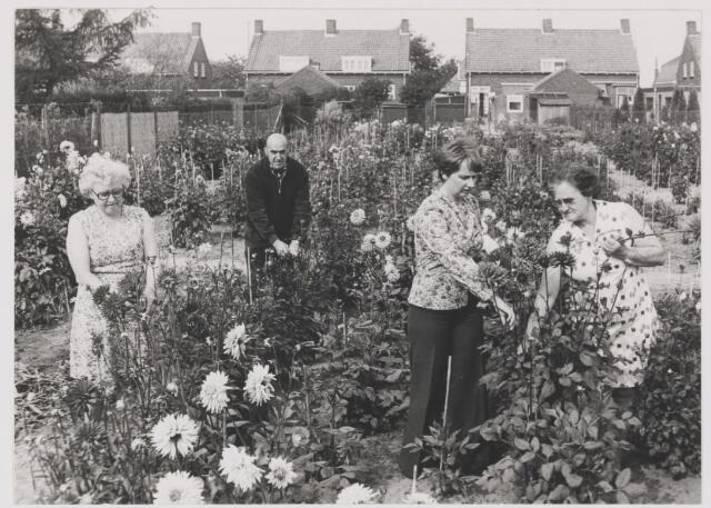 082175 - Tuin van de Bloemenvereniging Floralia uit Gilze