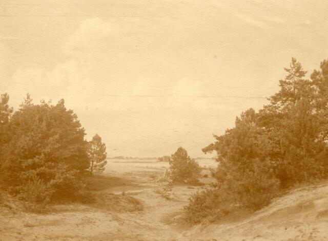 600763 - Landschap in de omgeving van Loon op Zand. Duinen en bossen.Kasteel Loon op Zand. Families Verheyen, Kolfschoten en Van Stratum