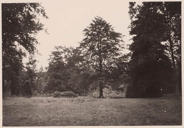 027869 - Oude Warande, nabij de vijver.