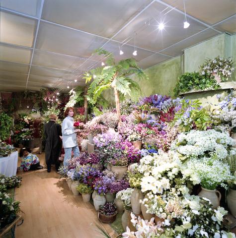 D-000291-1 - Interieur bloemenwinkel