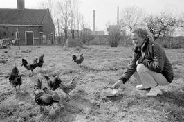 Corrie Bruijnzeel met kippen