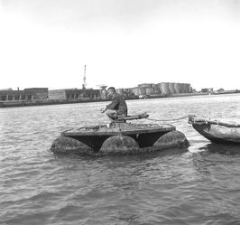 vissen in de Buitenhaven