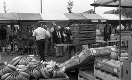duiven en fruit te koop op de eerste jaarmarkt