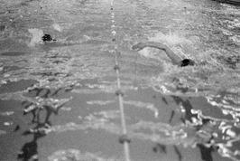 Finale wedstrijdzwemmen Zeeuwse Winterkampioenschappen, georganiseerd door KNZB-…