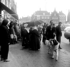 drukke dag in de regen, parapluie; straatmuzikant Smolders met hond