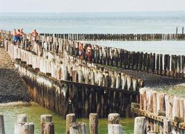 Strandgasten tussen de paalhoofden en golfbrekers.