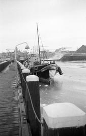 dichtgevroren Koopmanshaven