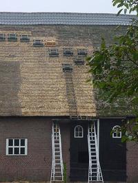 't Hof van Tilburg; van Tilburgstraat 50; rieten dak