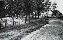 weg Absdal-Drieschouwen, nabij fort Ferdinandus; v¢¢r verbetering waarbij van di…