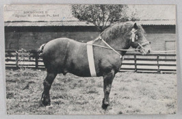 Bourgogne II van W. Dieleman