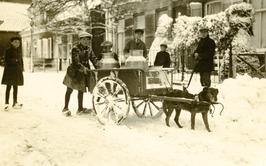 sneeuw; hond met kar en melkbussen