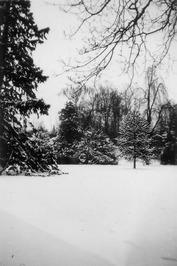 Marktveld 19 in de sneeuw
