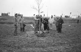 eerste boomplanting; gedeputeerde de Voogd plant boom; even ten westen van Goes …