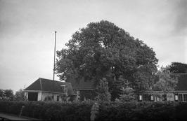 Deze boerderij stond in het dorp van Koudekerke, op de hoek van de Brouwerijstra…